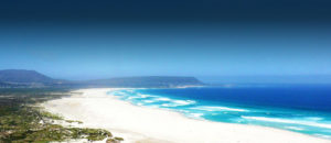 cape town surf yoga camp and surf guiding tours and stays