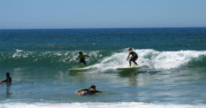 surf and stay camp packages in cape town south africa